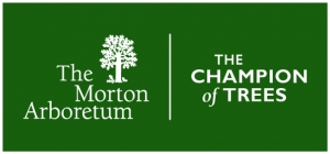The Morton Arboretum Logo has the words The Morton Arboretum flanked by a tree, and alongside it reads The Champion of Trees, our brand.